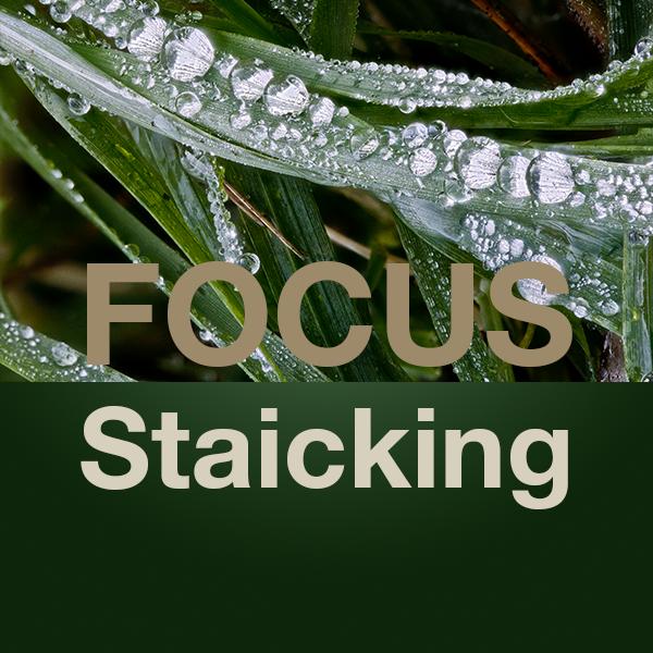 Focus staicking